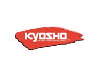 Kyosho (81)